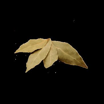 Bobkový list celý