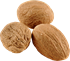 Muškátový ořech