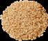Sezamové semienko